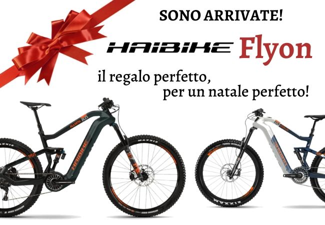 popup_natale_ebikedream_IT.jpg